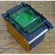 Радиатор HP p/n 279680-001 (socket 603/604) - Ростов-на-Дону