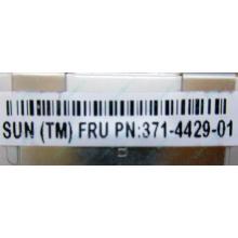 Серверная память SUN (FRU PN 371-4429-01) 4096Mb (4Gb) DDR3 ECC в Ростове-на-Дону, память для сервера SUN FRU P/N 371-4429-01 (Ростов-на-Дону)