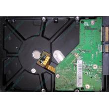 Б/У жёсткий диск 500Gb Western Digital WD5000AVVS (WD AV-GP 500 GB) 5400 rpm SATA (Ростов-на-Дону)